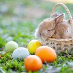 Pasqua: tradizioni, curiosità e leggende legate a questa festa primaverile