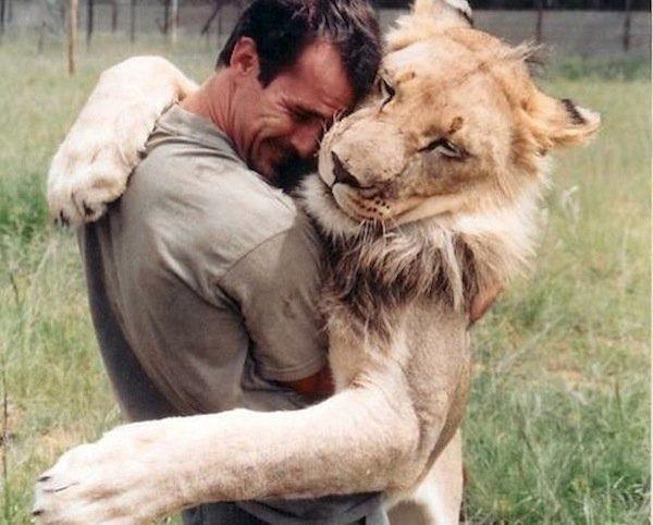 parlare con un leone